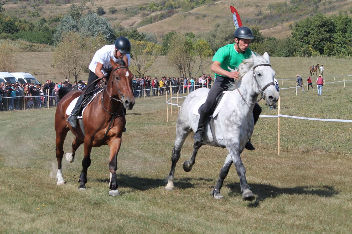 Nagy lány lovaglás kakas